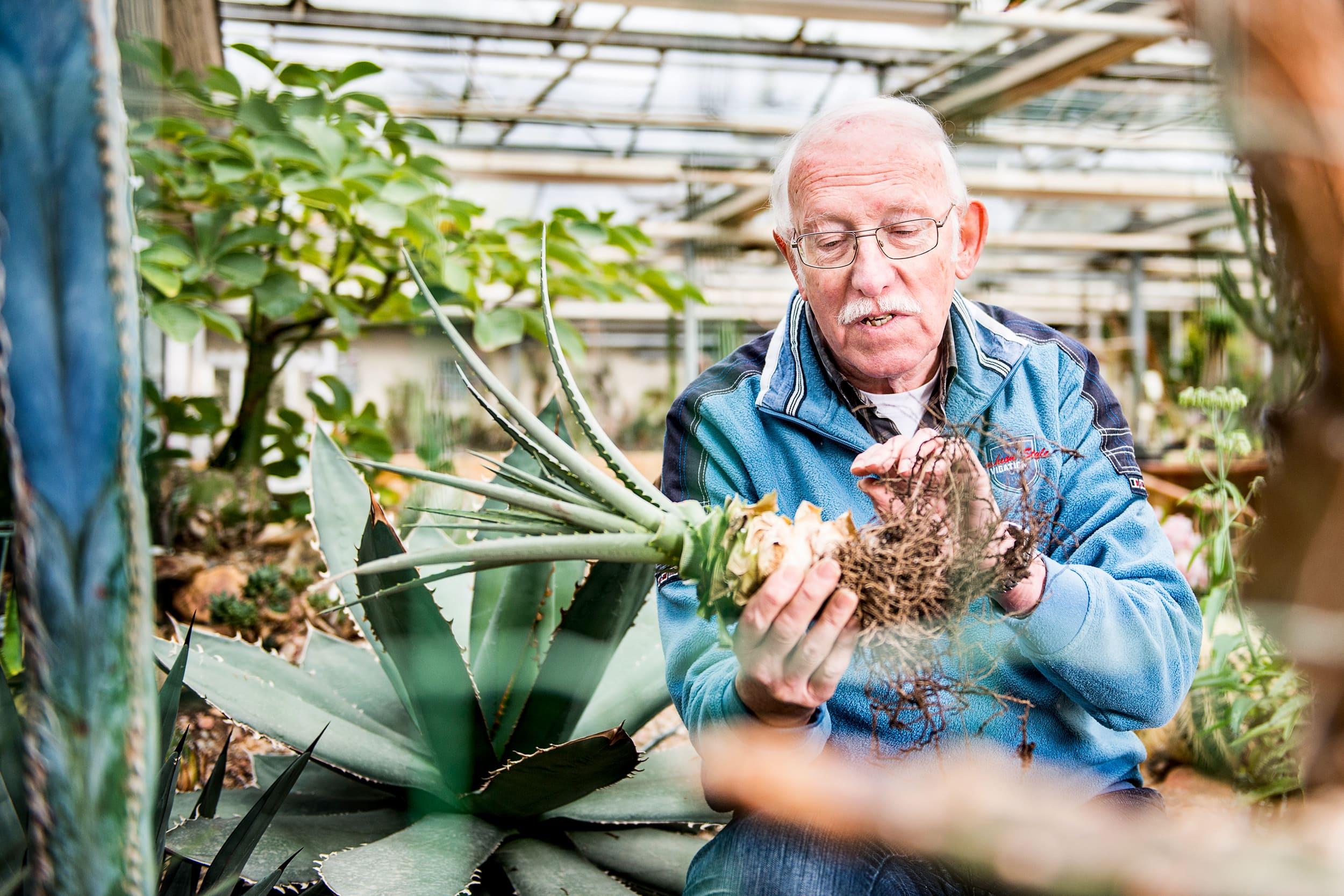 Redactioneel portret van de Cactusverzorger Jan in de cactuskas van het Arboretum in Rotterdam. Fotoshoot voor Rotterdam UitAgenda magazine.